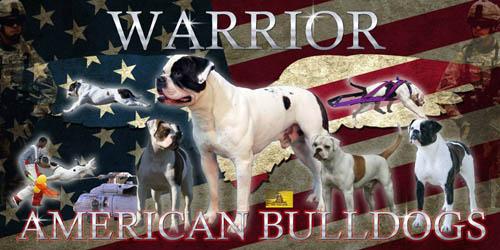 Warrior American Bulldogs - 2014 ABRA Kennel of the Year